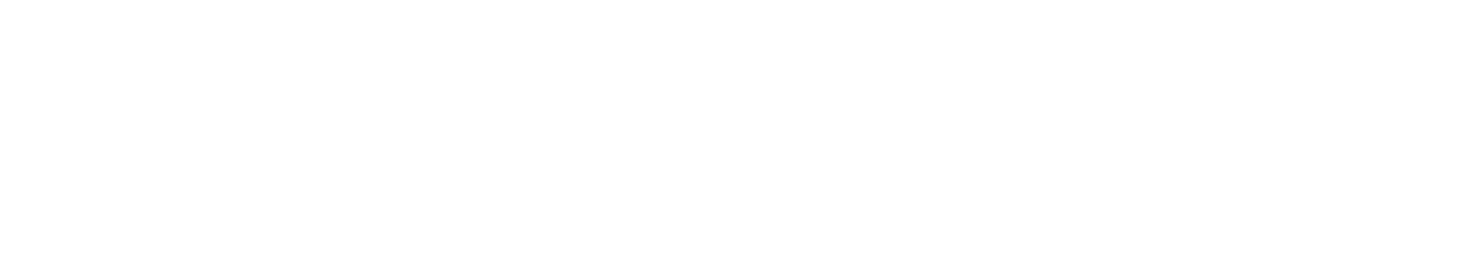 HSD White Logo
